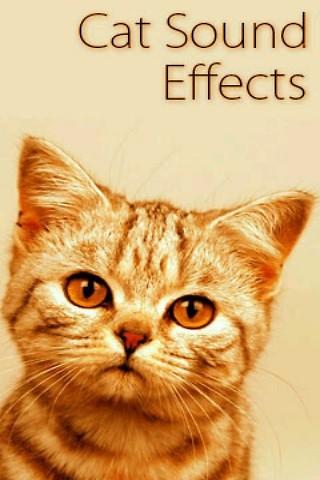 talkingcat download