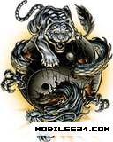 Dragon And Tiger Yin YangYin Yang Dragon Tiger Wallpaper