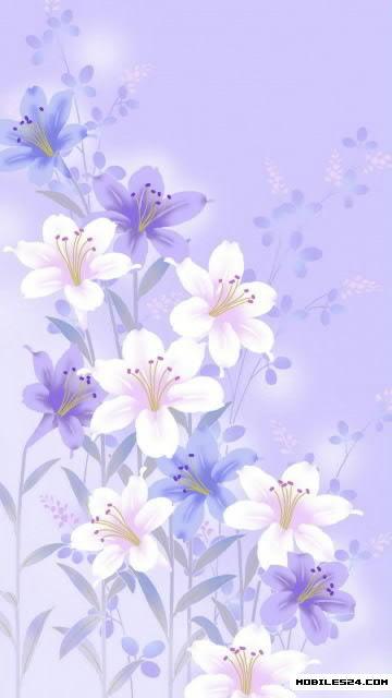 Flower Wallpaper Nokia 500 Wallpaper
