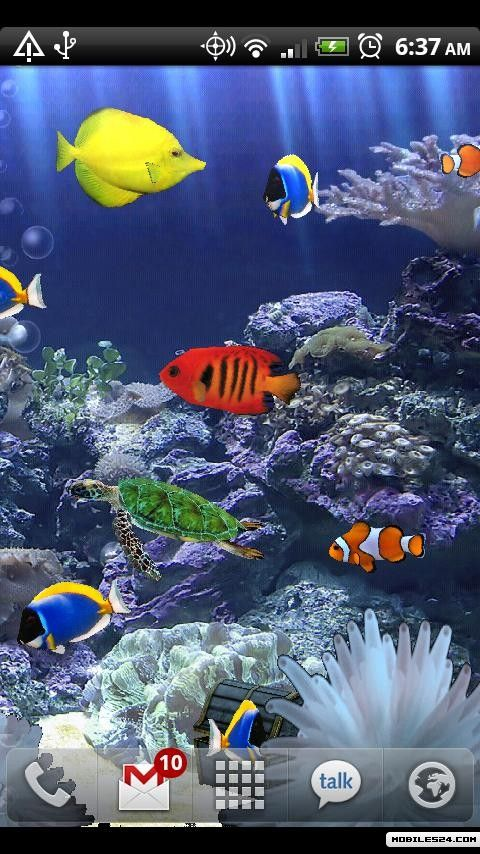 aquarium donation live wallpaper free android app download
