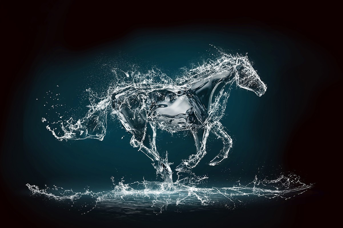 Amazing Water Horse Free Wallpaper download - Download ...