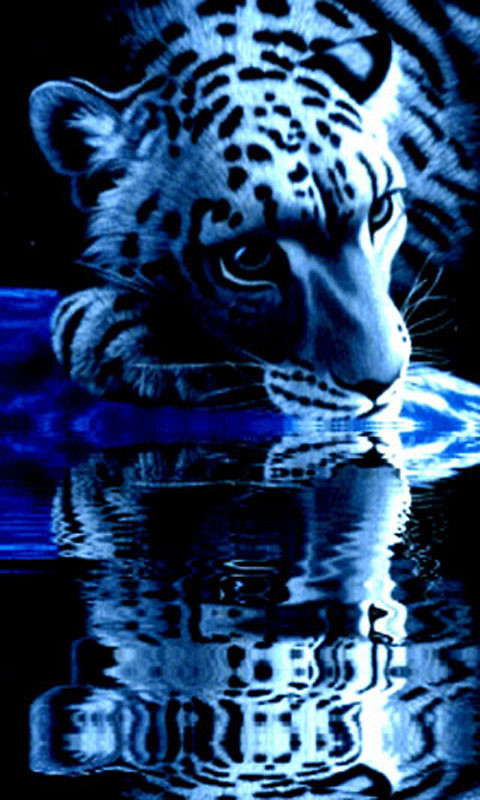 tiger 2 live wallpaper free android live wallpaper