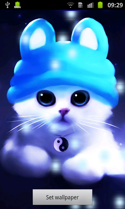 Cute Cat Bubbles Live Wallpaper Free Android Live Wallpaper download