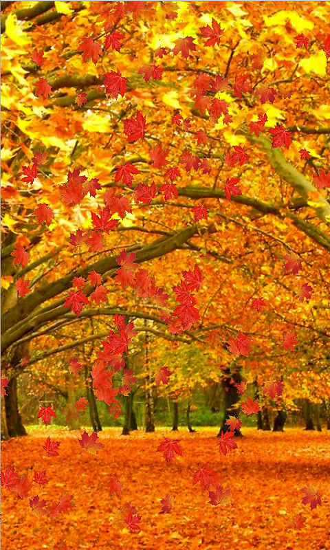 fall live wallpaper and daydream free android live