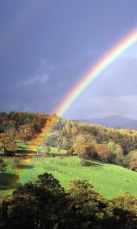 real rainbow wallpaper - photo #24