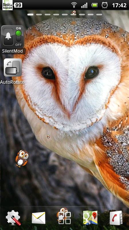 Free live owl wallpaper