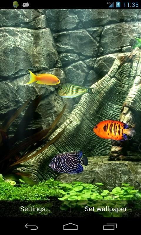 Dream Aquarium Free Android Live Wallpaper Download