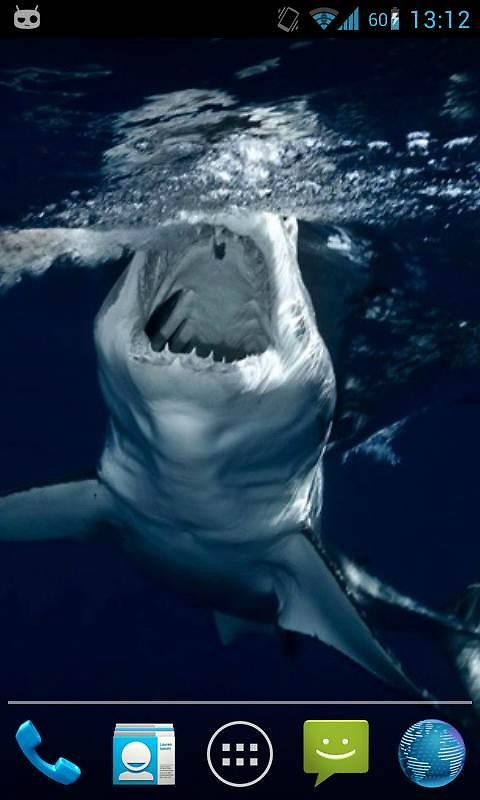 Shark Attack Live Wallpaper Free Android