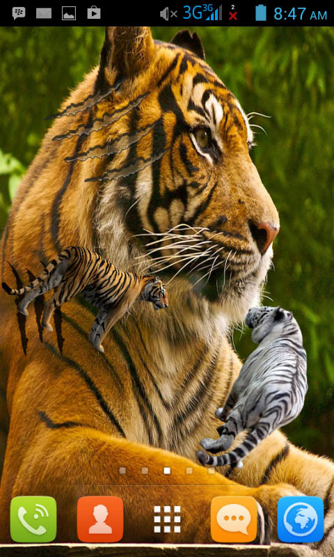 tiger live wallpaper free android live wallpaper download