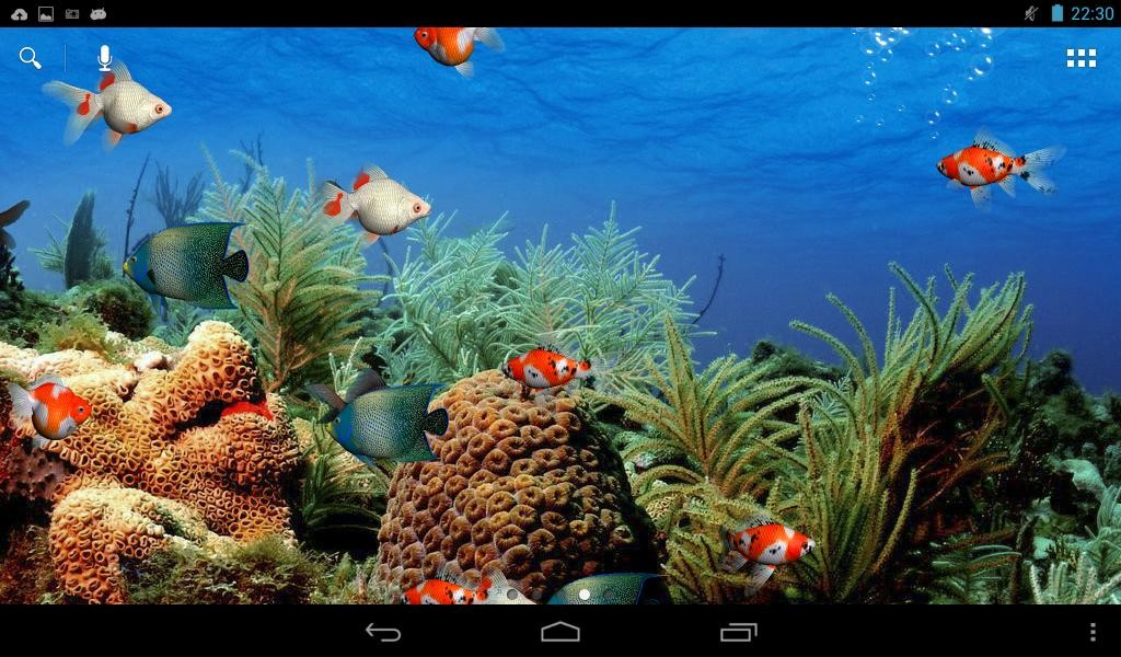 Aquarium Live Wallpaper Aquarium Live Wallpaper ...