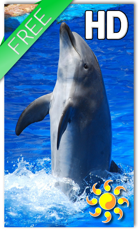 Live wallpaper android free dolphin