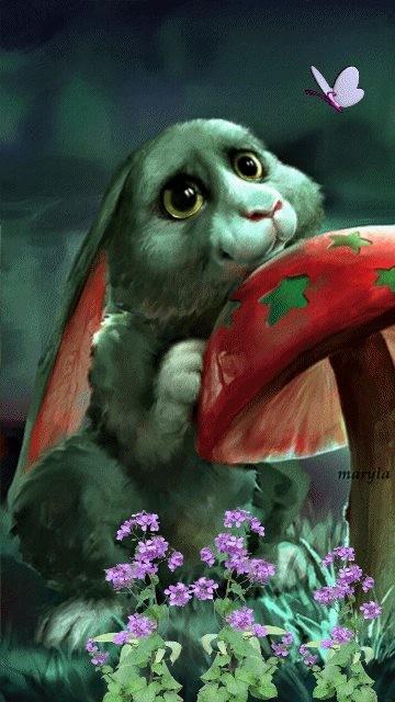 Fantasy Bunny Live Wallpaper Free Theme Background