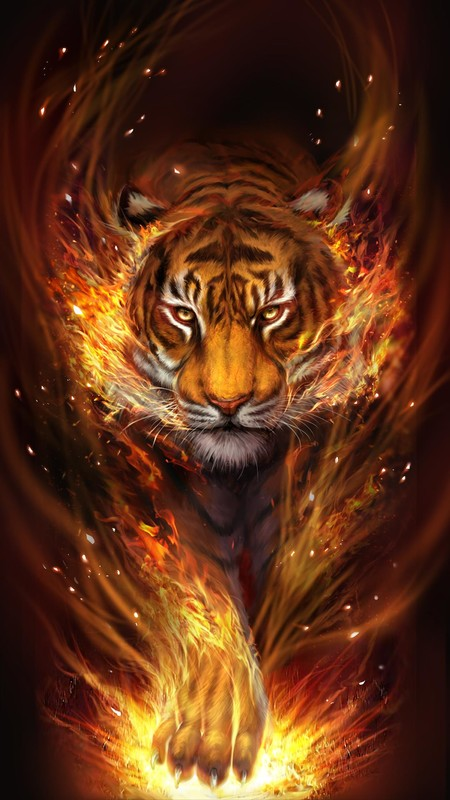 Flame Tiger Live Wallpaper Free Android Live Wallpaper Download