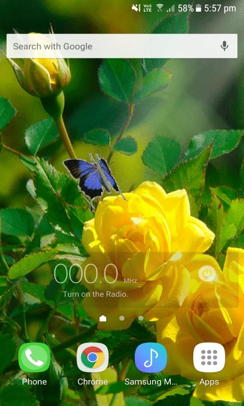 Yellow Rose Butterfly Lwp Free Android Live Wallpaper Download