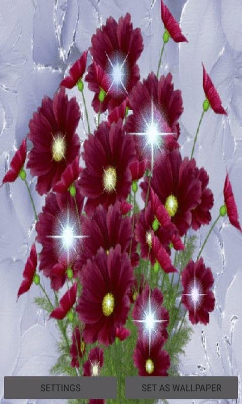 Beautiful Flowers Shine LWP