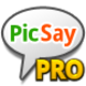 Picsay Pro - Photo Editor App Icon