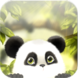 Panda Chub Live Wallpaper App Icon