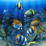 Colorful Fish Live Wallpaper Icon