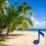 Music Ocean Icon