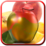 Fruits Photo Frames Icon