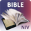 NIV Bible for Study Free Icon