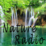 Free Radio Ambient And Nature Icon