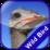 Jungle Bird Matching Game Icon