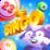 Bingo Raccoon Icon