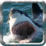 Deadly Shark: Marine Simulator Icon