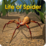 Life of Spider Icon