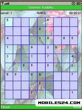 Cosmos Sudoku (320x240)
