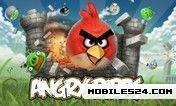 Angry Birds (240x320) Nokia X3-02