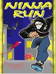 Ninja Run (240x400)