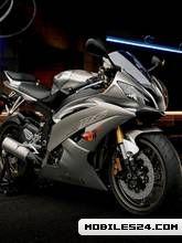 Yamaha R16