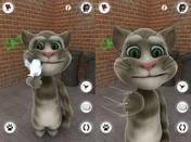 Talking Tom Cat 1.0