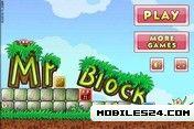 Mr Block