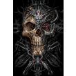 Bio Skull