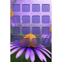 Daisy - Home Screen iP4