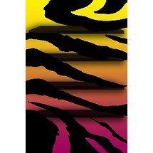 Colorful Zebra Print - Home Scrn iP4