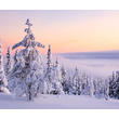 Yllasjarvi Lapland