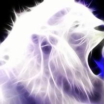 White Lion Fractal