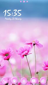 Pink Flowers GO Launcher EX