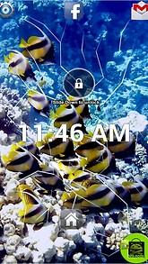 Angel Fish Lock Screen