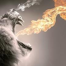 Roar Flame