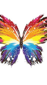 Abstract Butterfly Paint