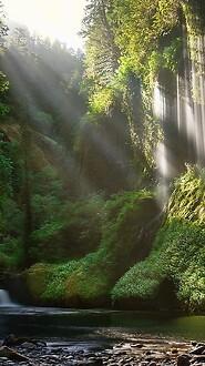 Ravine Waterfall