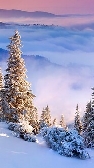 Winter Alps