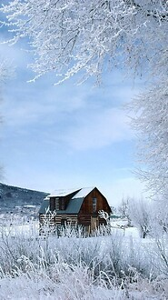 Winter Wonderland, Steamboat Springs, Colorado