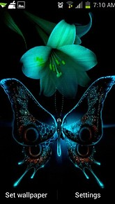 Lilly Butterfly Live Wallpaper