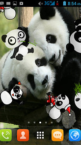 Panda Live Wallpaper Best